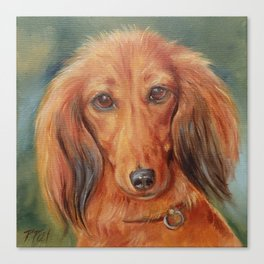 Teckel Dachshund Red Dog Cute Pet Portrait on green background Autumn colours Oil painting on canvas Canvas Print