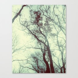 November Day Canvas Print