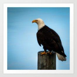 The eye of the eagle Art Print