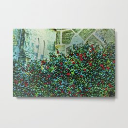 Holly Bush Metal Print