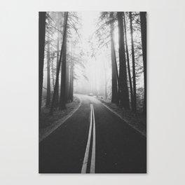 ROAD TRIP III / California Canvas Print