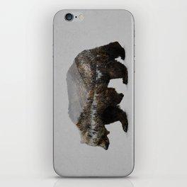 The Kodiak Brown Bear iPhone Skin