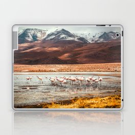Flamingo Lake, Bolivia #society6 #buyart #homedecor Laptop & iPad Skin