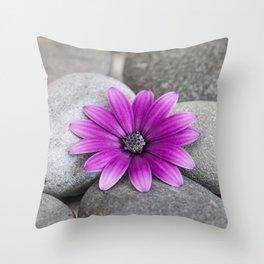 Zen Pink Daisy Pebble Still Life Throw Pillow