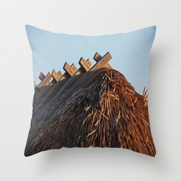 No One Knows the Story Throw Pillow