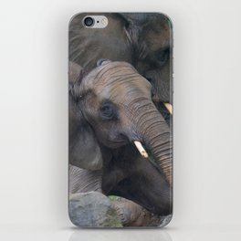 Elephants Eye iPhone Skin