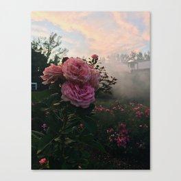 Foggy Pink Flower Canvas Print