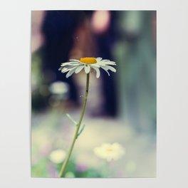 Daisy I Poster