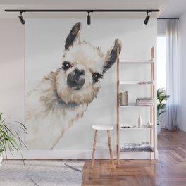 Sneaky Llama White Wall Mural