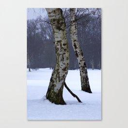 Two tress Canvas Print