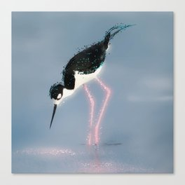 Stilt Pink Legs Canvas Print