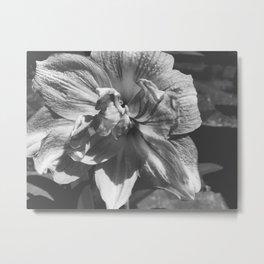 B&W Ballerina Flower Metal Print