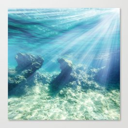 Sea Bottom Canvas Print