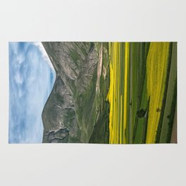 The fields of Castelluccio Rug