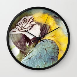Magical Parrot - Guacamaya Variopinta - Magical Realism Wall Clock
