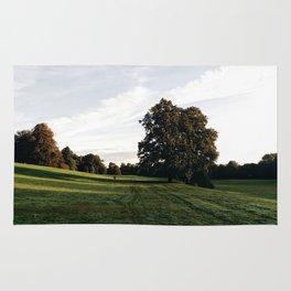 Darley park in Derby at sunrise Rug