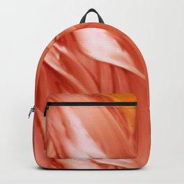 Sierra de la Plata Backpack