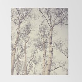 Winter Birch Trees Throw Blanket