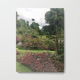 Stormy Garden Metal Print
