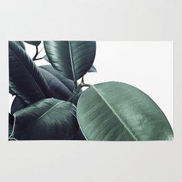 Ficus Elastica #18 #White #foliage #decor #art #society6 Rug