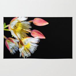 Bold and Wild Flowers Rug