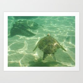 Swimming with the turtle Art Print