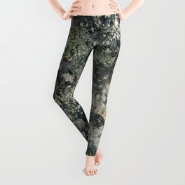 Mossenger Microcosms Leggings