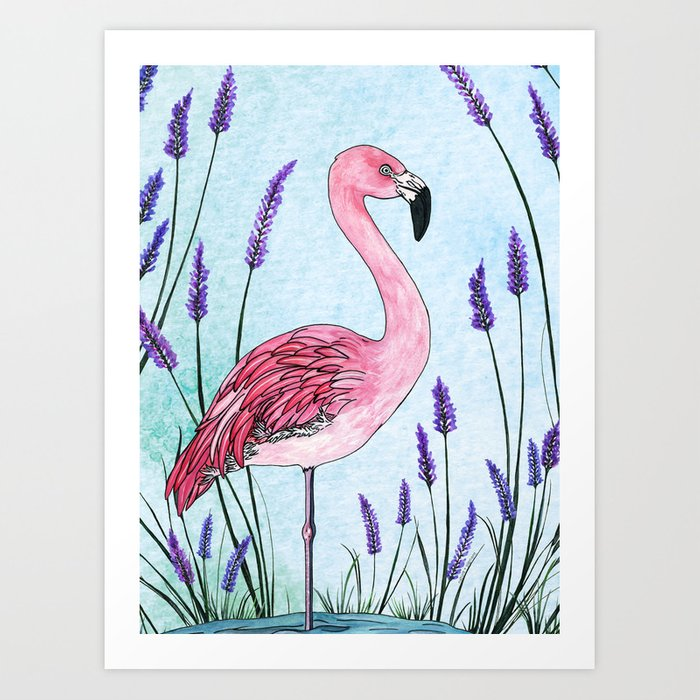 Chilean Flamingo Art Print