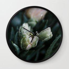 Returning Spring II Wall Clock