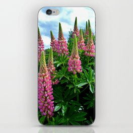 Rose Lupins in the Garden iPhone Skin