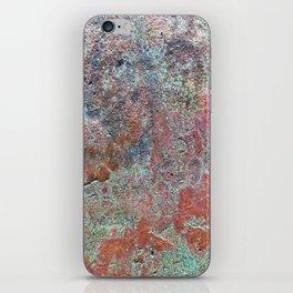 Ancient Metallics iPhone Skin