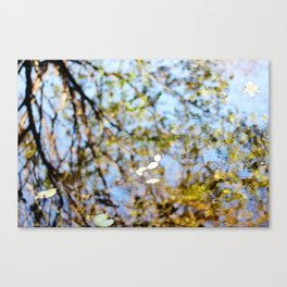 Reflection on Water Canvas Print