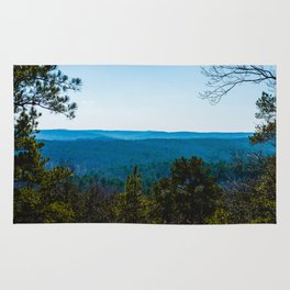 Park with a view Rug