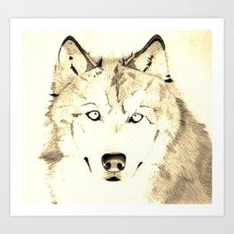 Wolf, brightened Art Print