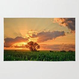 Iowa Summer Fields Rug