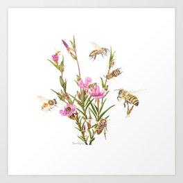 Honeybees buzz around the attractive flowers of the Purple clarkia in the front yard Art Print