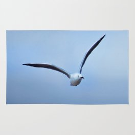 Seagull in flight Rug