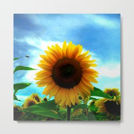 The sun will come out tomorrow Metal Print