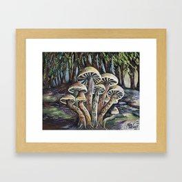 Tofino Rainforest Framed Art Print
