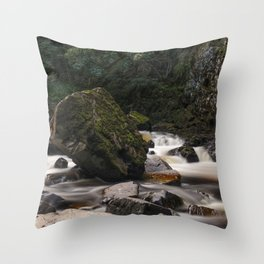 Conway Falls Throw Pillow