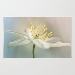 Loveable Wood Anemone... Rug