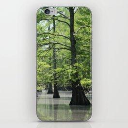 Cypress Trees in the Louisiana Swamp iPhone Skin