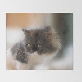 Nano Baby Kitten Throw Blanket