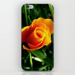 CA Poppy in the Morning iPhone Skin