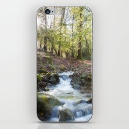 Enchanted Stream iPhone Skin