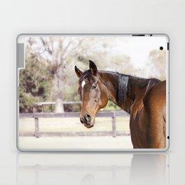 Dazzling Eyes Gulliver Laptop & iPad Skin