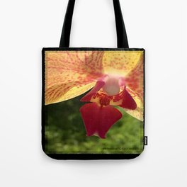 Yellow Orchid Flower Blossom from Mexico Tote Bag