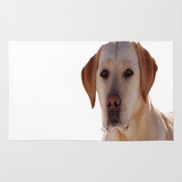 Portrait of A Golden Labrador Dog Rug