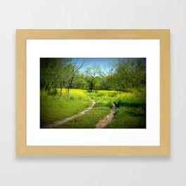 Lampasas Trail Framed Art Print