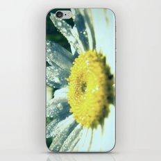 Dewy Ingenue iPhone & iPod Skin